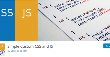 Simple Custom CSS and JS