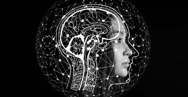 Fungsi-Dan-Bagian-Otak-Manusia