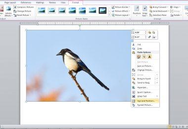 Mengedit dan Mengompres Gambar di Microsoft Word