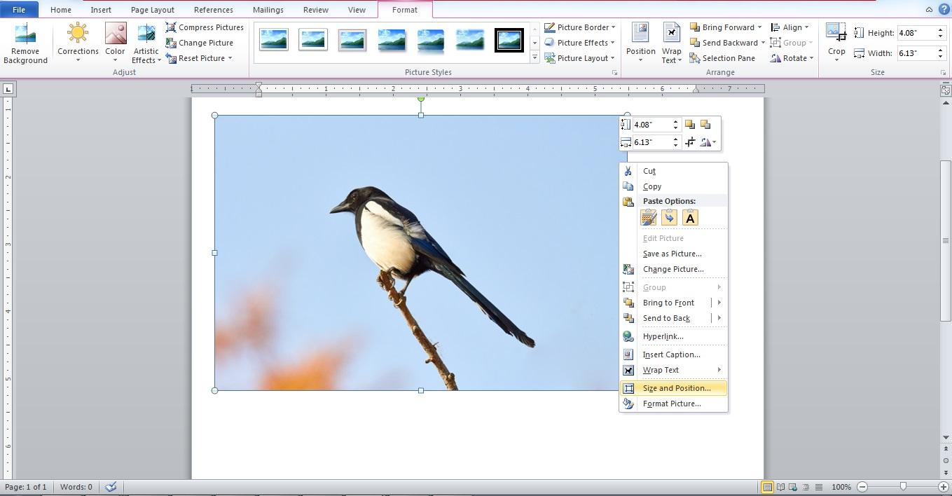 Cara Mengedit dan Mengompres Gambar di Microsoft Word ...