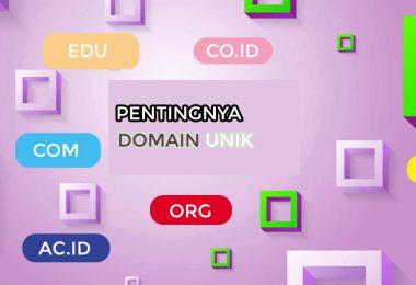 Pentingnya Memiliki Nama Domain Unik